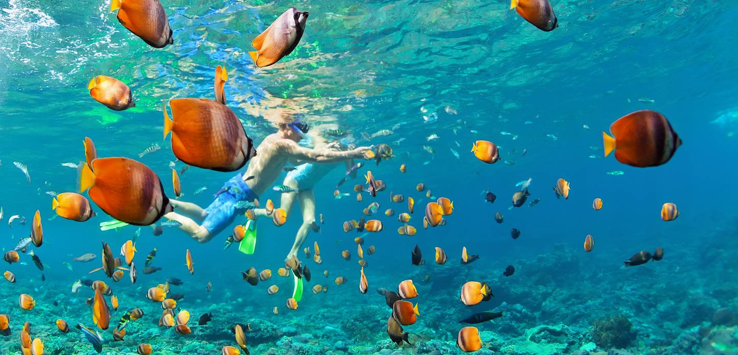 kids snorkeling with fish